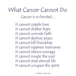 What Cancer Cannot Do - Dark Blue Text