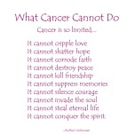 What Cancer Cannot Do - Dark Pink Text