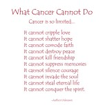 What Cancer Cannot Do - Red Text
